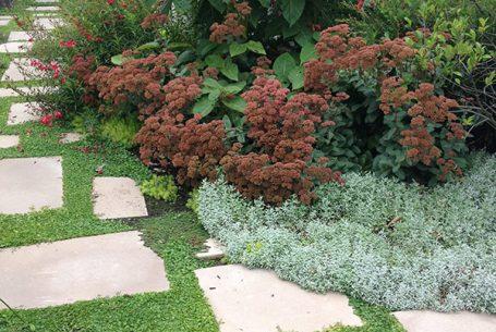 Landscape Design Kew